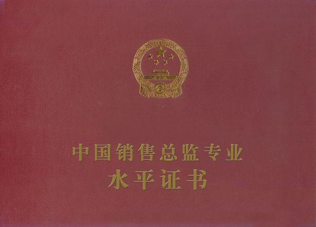 中国销售总监专业水平证书封面